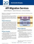29West API Migration Services